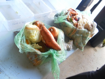 https://guelphfoodwaste.files.wordpress.com/2014/07/sam_1309.jpg?w=361&h=276