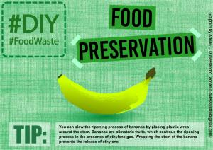 FoodWaste Infographic_A (2)