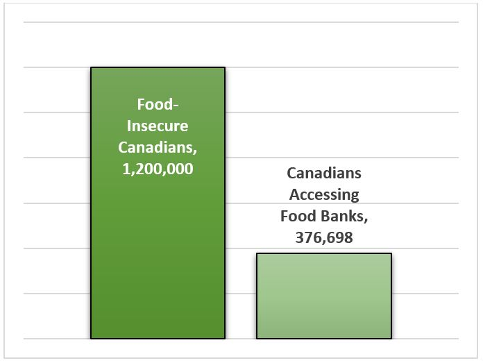 Food Bank Does Not Solve Food Insecurity